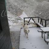 Spolverata di neve sul Gran Sasso