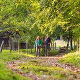Wandern am Chiemsee - ©Chiemsee Alpenland Tourismus