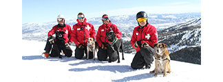 Avalanche Rescue Dog Awareness Event - ©Deer Valley Resort