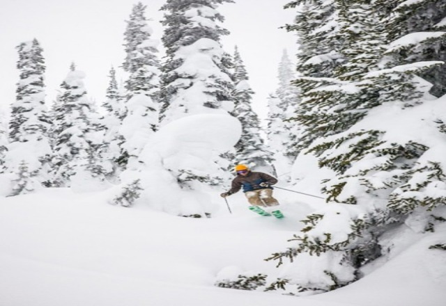 Fernie was so fun lots of pow pow bluebird days I hope I will come back next year. Pic was takin with canon