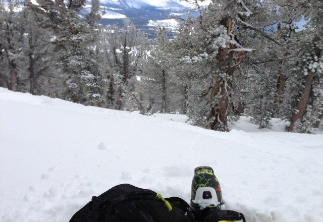 gnar gnar pow pow thursday!