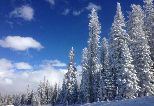 Yep, it's really that beautiful at Beaver Creek today in Colorado. great conditions too!!