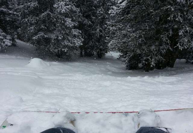 powder with some ice crust underneath...great day though...great powder to be had in the forests