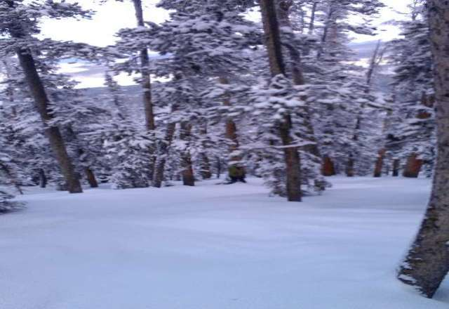 Mary Jane Rules! More snow around the corner!
