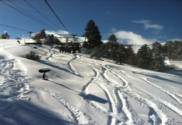 yup, yesterday (sat) was money- snow wise.  except for chair 9 froze for an hour while everyone was on lift!  c'mon bear!