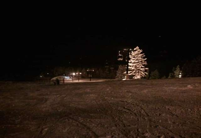 Night ski. With powder on the bunny hill!