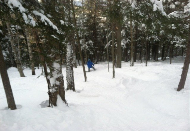 deep snow in the far east and west glades