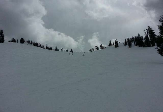 mt rose,  another great day. the overcast clouds provided a little snow & chilled the upper runs into a packed powder type condition. low crowds & cloud cover made for fantastic skiing. if you didn't show you missed great spring skiing. CJ mtr local