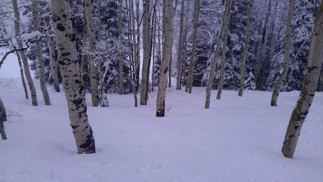 Wednesday awesone pow day no one there,untouched pow