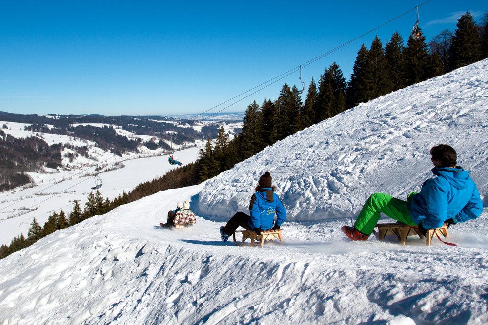 Alpsee Bergwelt