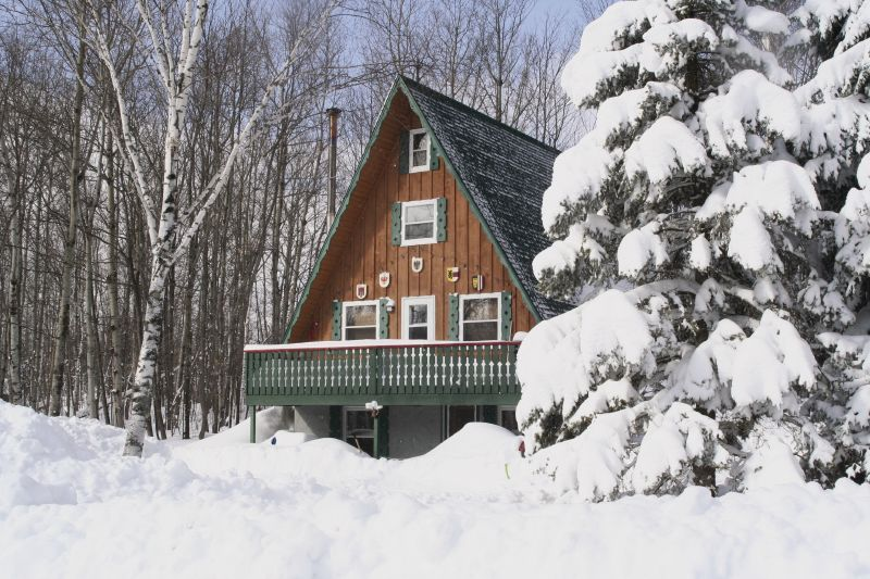 A view of a cabin set amongst the trees in Indianhead Mountain, Michigan