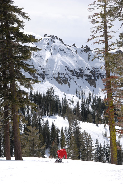 A skier takes in the view at Sugar Bowl Ski Resort, California