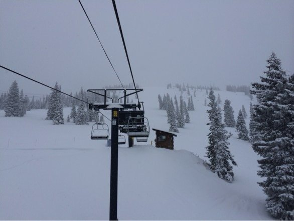 So much pow ... Trees were awesome