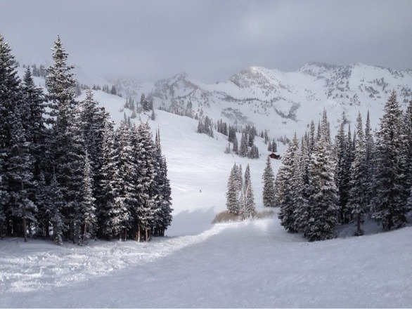 Alta is awesome and the snowfall and base are much better than the posted numbers