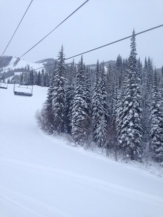 Another beautiful powder day at Kicking Horse!!!