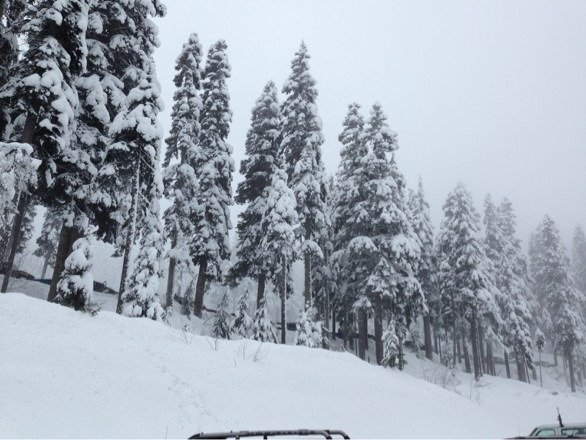 Awesome day for my first time! Great snow and weather....