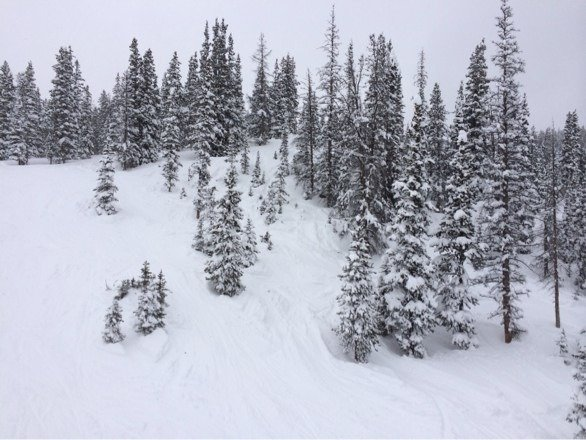 Great snow today! Nice packed powder and fresh stuff falling all day. Epic!