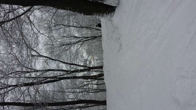 shot is sideways but a quick picture of devils drop before killing the glades all day in freshies.  really great day.