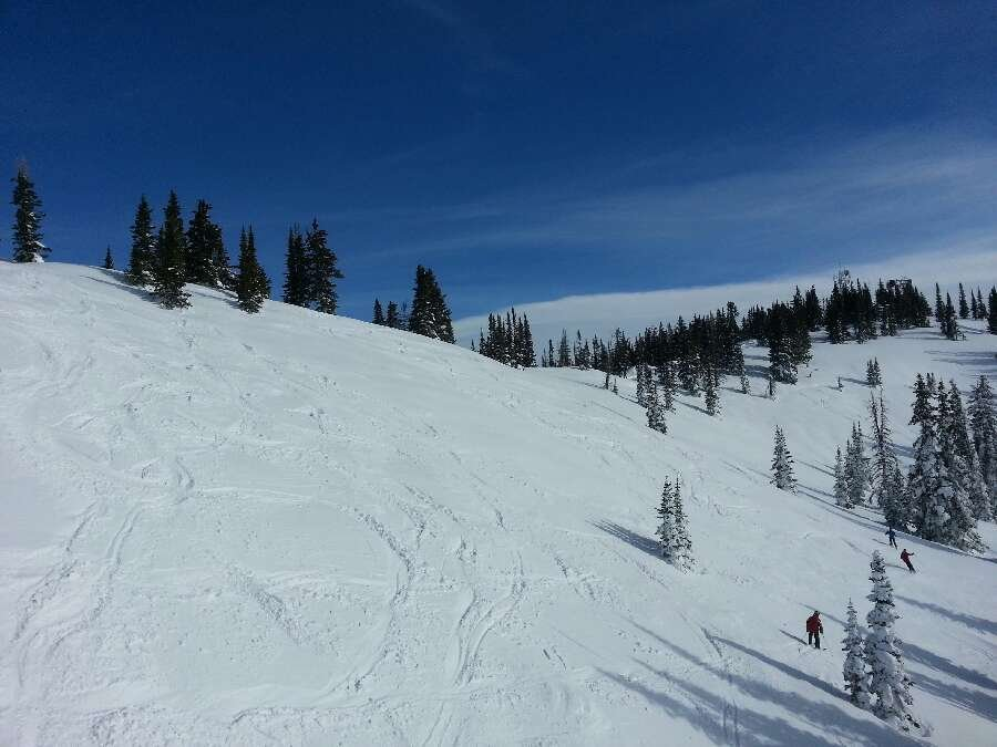 Bluebird day on Morningside
