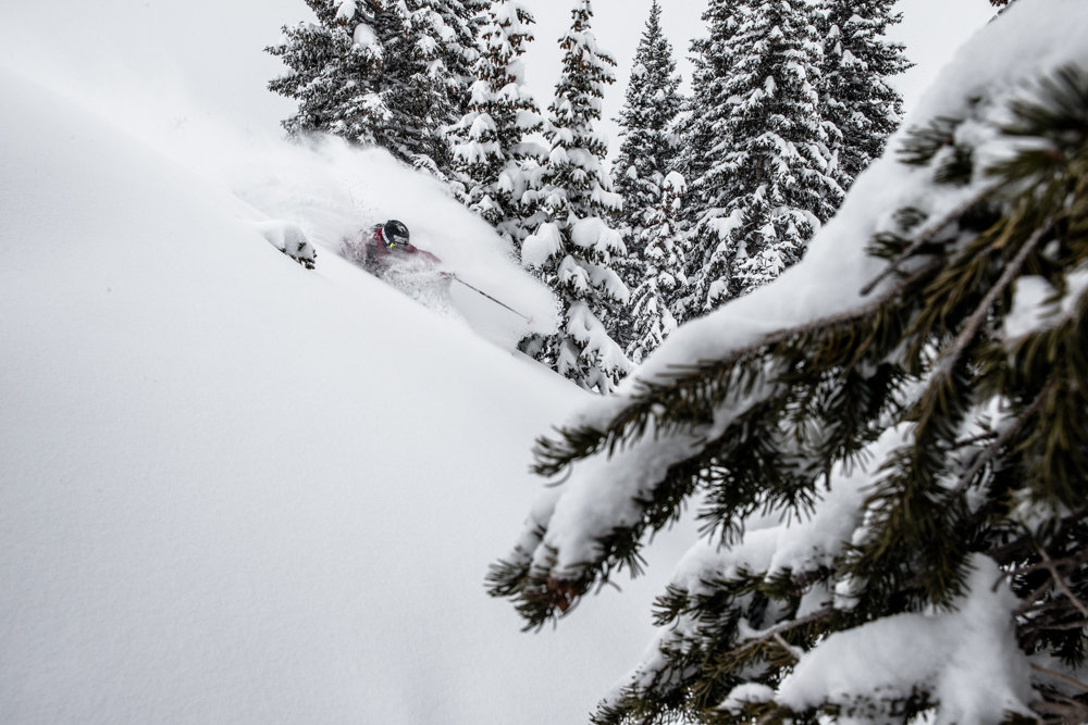 TJ David finds fresh pockets of powder all over Highlands.