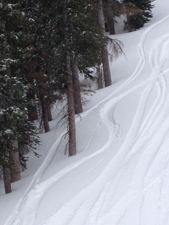 Rocking facials all morning. Up to two more feet on the way! Powbooya!