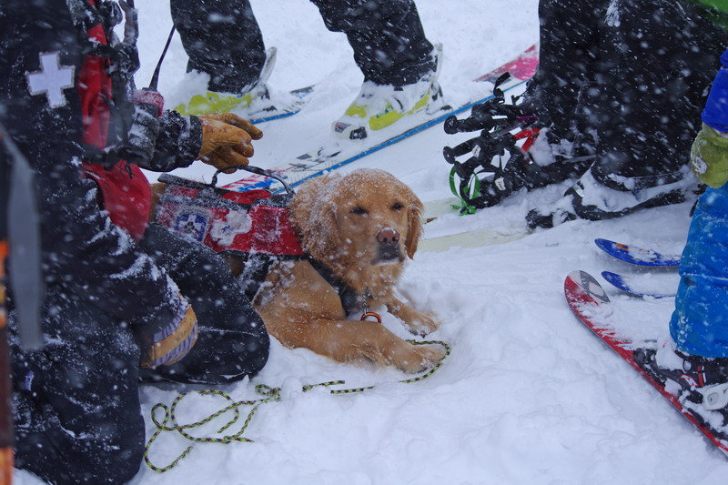 Rio shows the kids the ropes at A-bay. - ©Arapahoe Basin