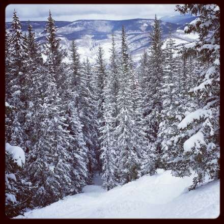 Amazing weekend at the Beav! Awesome conditions both Saturday and Sunday. Cutting fresh tracks all morning and getting buried in the trees all afternoon! Lines were short except for the problems with the Rose Bowl lift...