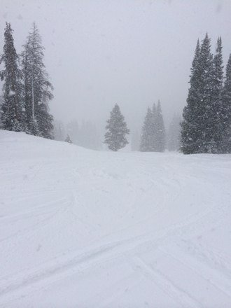 Great snow this morning, great shredding. Not to busy! Good luck with the tunnel.