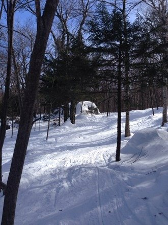 Super good out there, stumbled into the sunset trees, excellent tree skiing