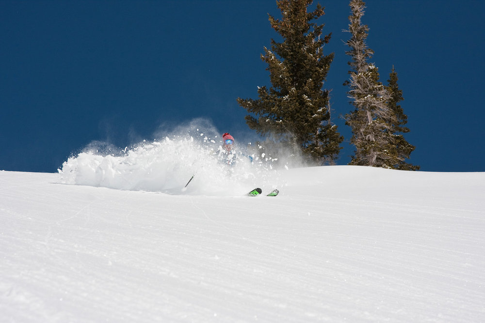 Utah is notorious for being steeper and deeper, and Snowbird is no exception.