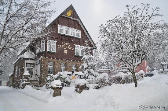 Hotel Hasselhof