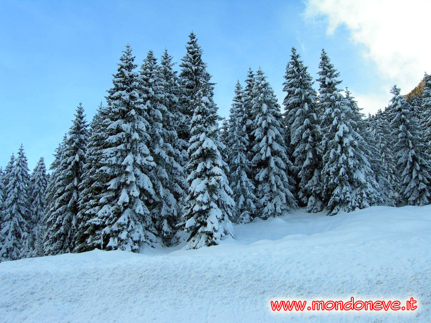 Sella Nevea - Kanin - ©Davide Rigon | MondoNeve.it @ Skiinfo Lounge