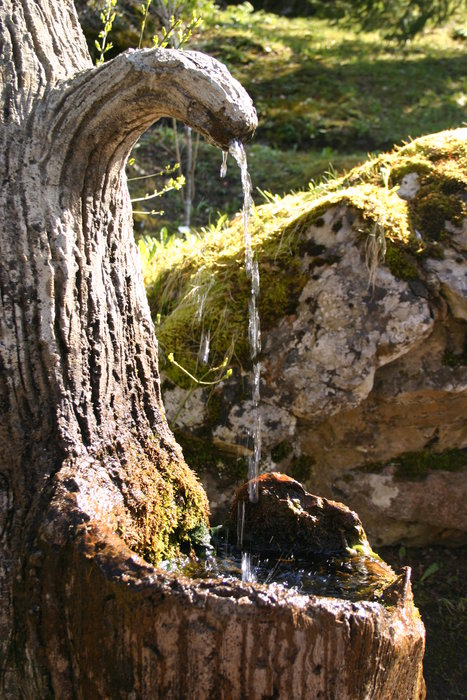 Tree Fountain - ©Sal @ Skiinfo Lounge