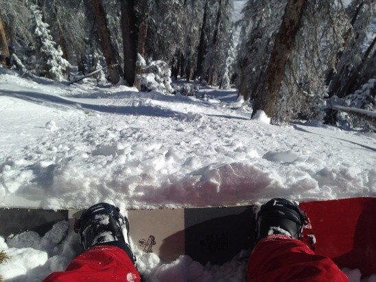 Amazing first day, a bunch of hidden obstacles but the powder was great!