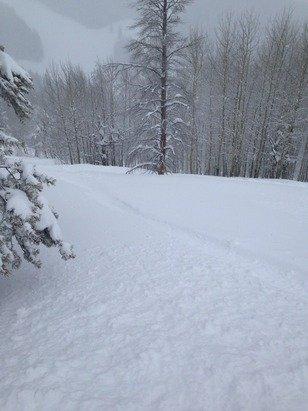 Let it snow ! Let it snow !!!