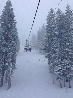 Powder skiing is awesome!! We did tree runs on the powder snow! So fun!!! We think it will be awesome tomorrow too!