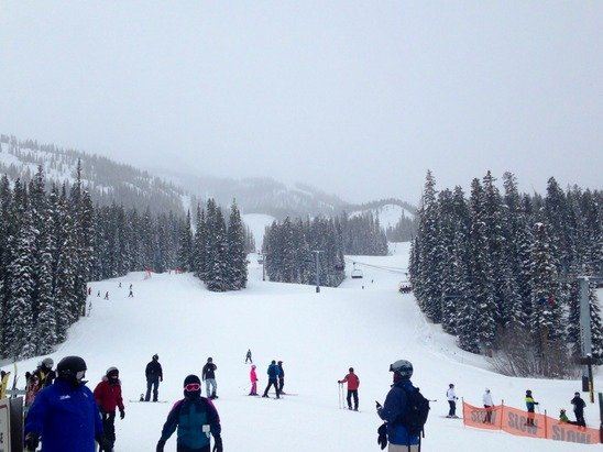 Light fluffy snowfall