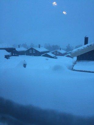 Det har kommet utrolig mye snø, nå er det pudderalarm i heisen !!!