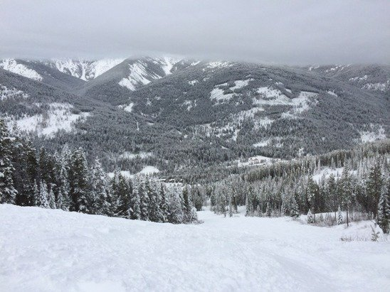 Today was a good day.  Creamy snow to ride for most of the day.  Not very busy right now which is great.    As a first time boarder here I am impressed.  Snowing tonight so hopefully the trails will be good.