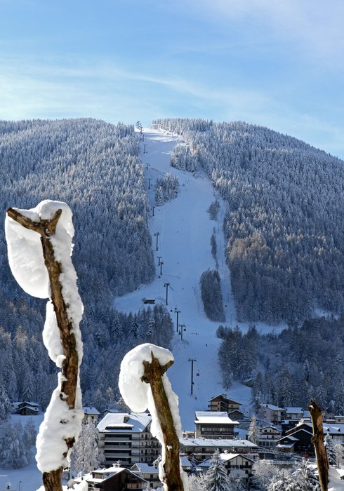 Aprica - ©Aprica Online