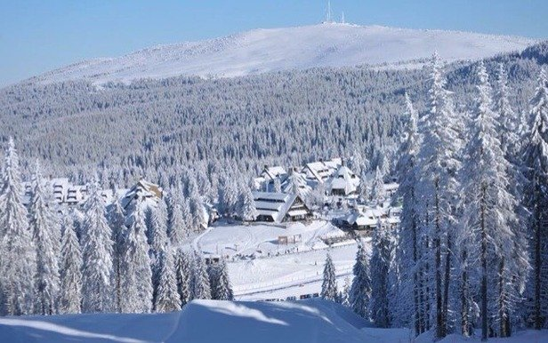 Snow 60-120 cm