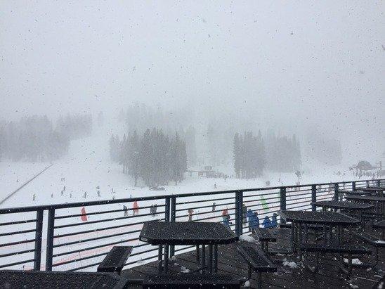 Blizzard. Wait no, it's raining- everyone stay home tmrw