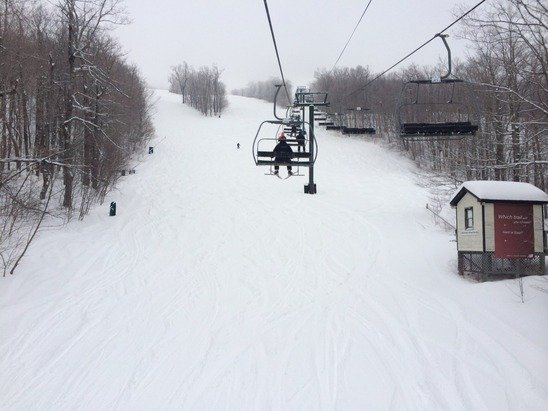 Four inches of new snow, still snowing, glades are fab