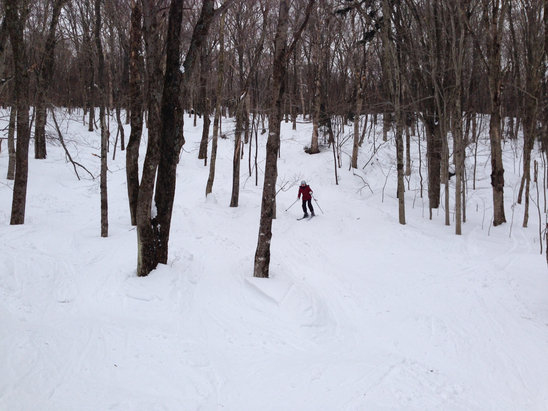 2/26/15  Still good snow in the woods.  Groomers are still soft. Good day. No one there. Very cold.