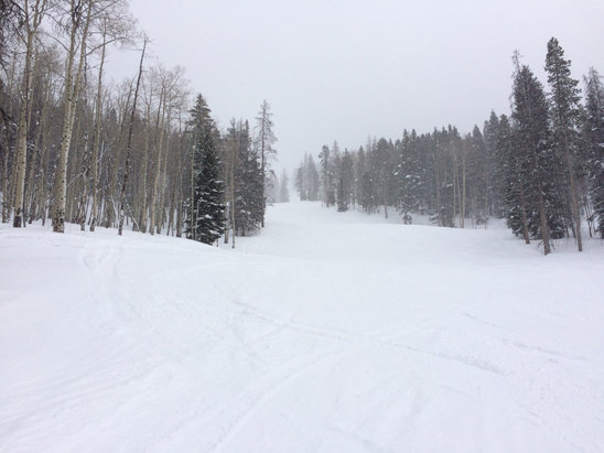 Beaver Creek - Great day on the mountain!  Soft powder on Larkspur lift trails and just about everywhere else.  And it wasn't chewed up at the end of the day some trails felt as if it had 8 inches.  Just a tad icy on the strawberry chair.  Bummer the top of Golden Eagle is closed.  Enjoy!!