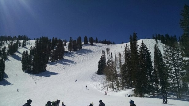 Solitude Mountain Resort - Bright, Warm, and Fast.