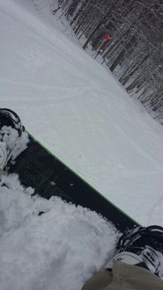 Mont Saint-Sauveur - Powder!!... first tracks were great! - ©jibril21