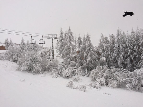 Alpe d'Huez - First Hand Ski Report