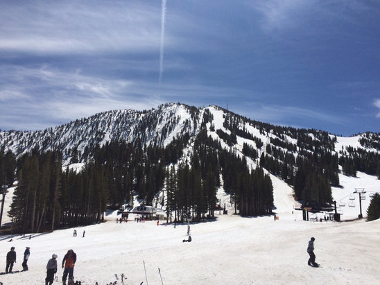 Mt. Rose - Ski Tahoe - Slopes were fun, but very icy or slushy. Not worth a vacation destination right now.