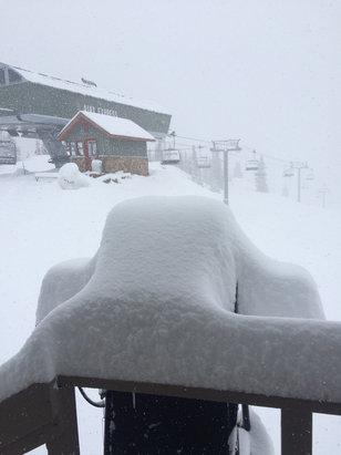 Aspen / Snowmass - New snow last night